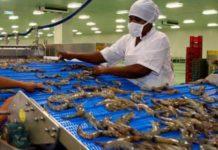 Nuevo reglamento de acuicultura de Ecuador